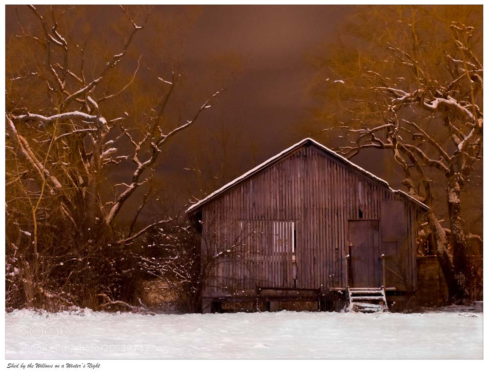 Photograph Shed by the Willows on a Winter's Night by Ort Baldauf on 500px