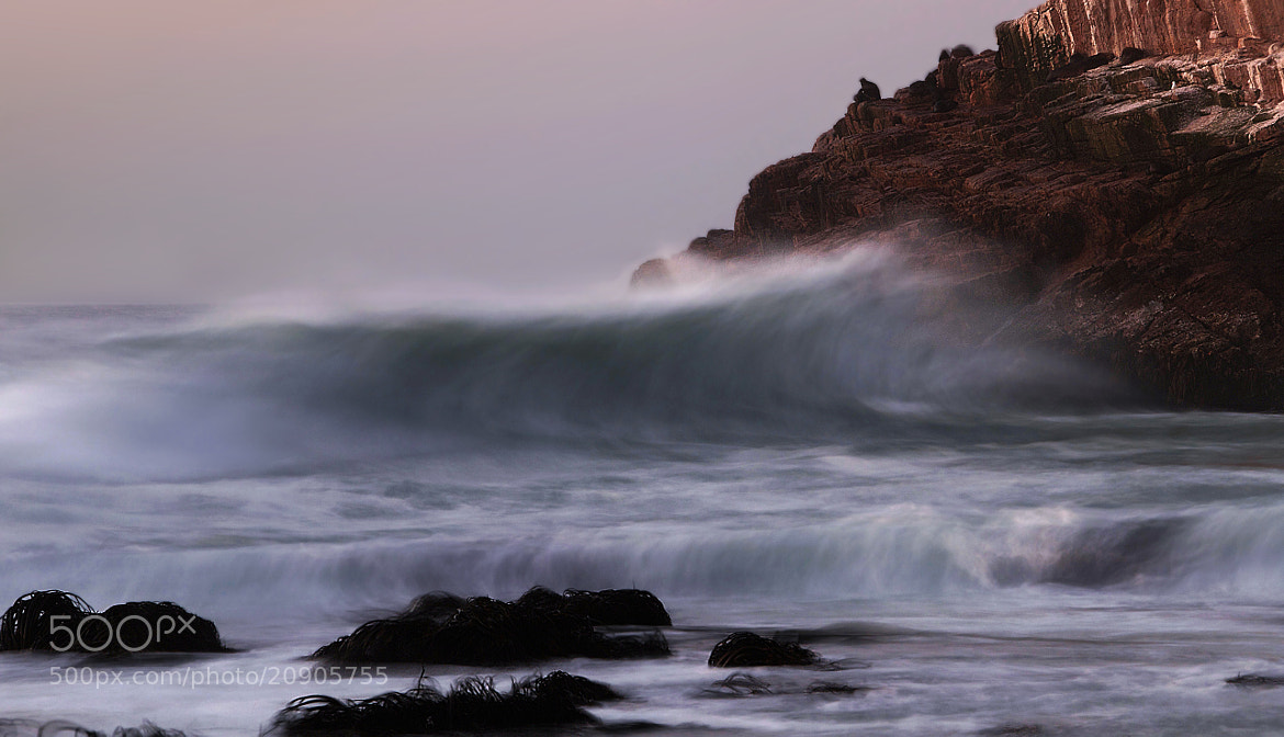 Photograph The Wave by Jorge Hernández on 500px