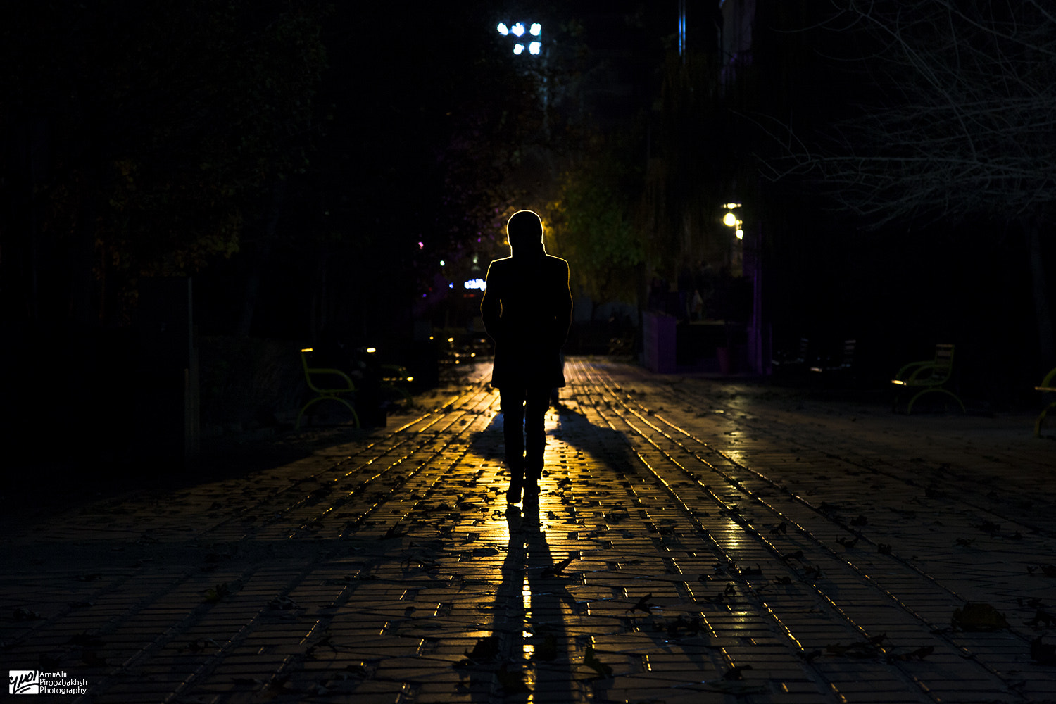 Photograph Walking into The Night by AmirAli Piroozbakhsh on 500px
