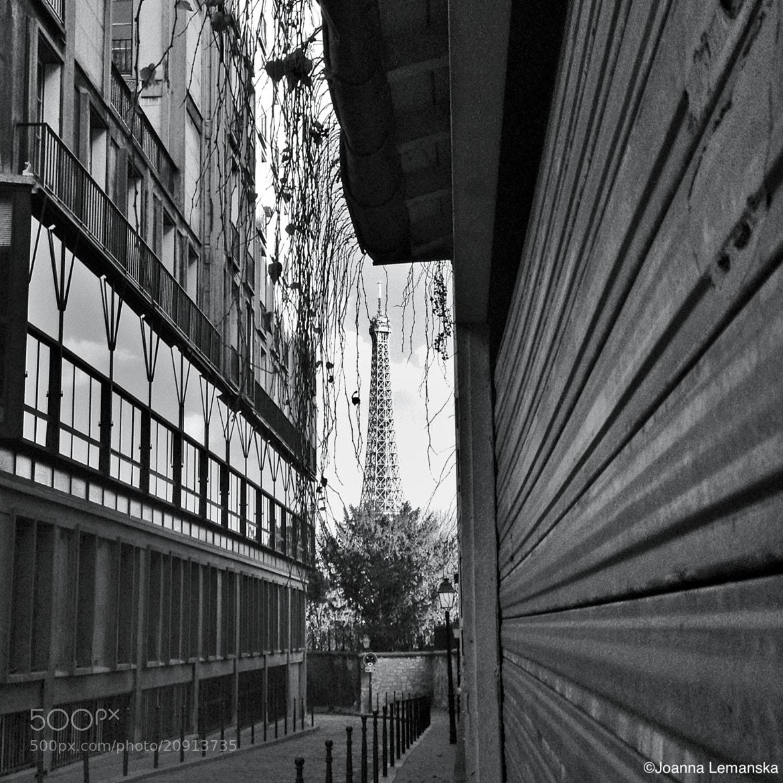 Photograph Leading lines by Joanna Lemanska on 500px