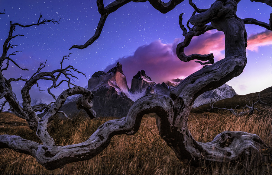 Hand Of God by Timothy Poulton on 500px.com