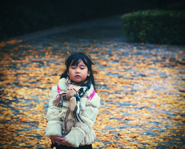 Photograph Untitled by Gerry Gao on 500px