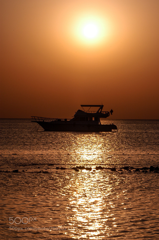 Photograph Sunrise by Edmund Orzsik on 500px