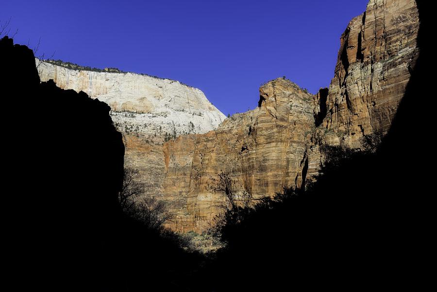 Zion National Park XXXIV