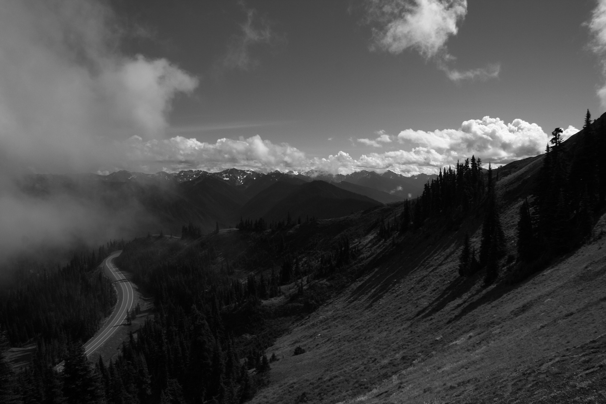 Photograph Hurricane Ridge by Kenneth Williams on 500px