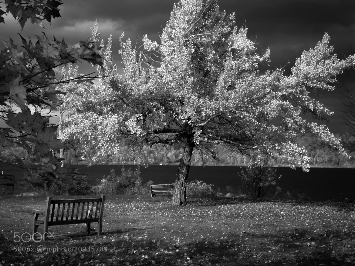 Photograph Sit with Me by Kenneth Williams on 500px