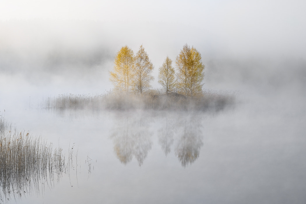 Photograph The First Scene by Leszek Paradowski on 500px