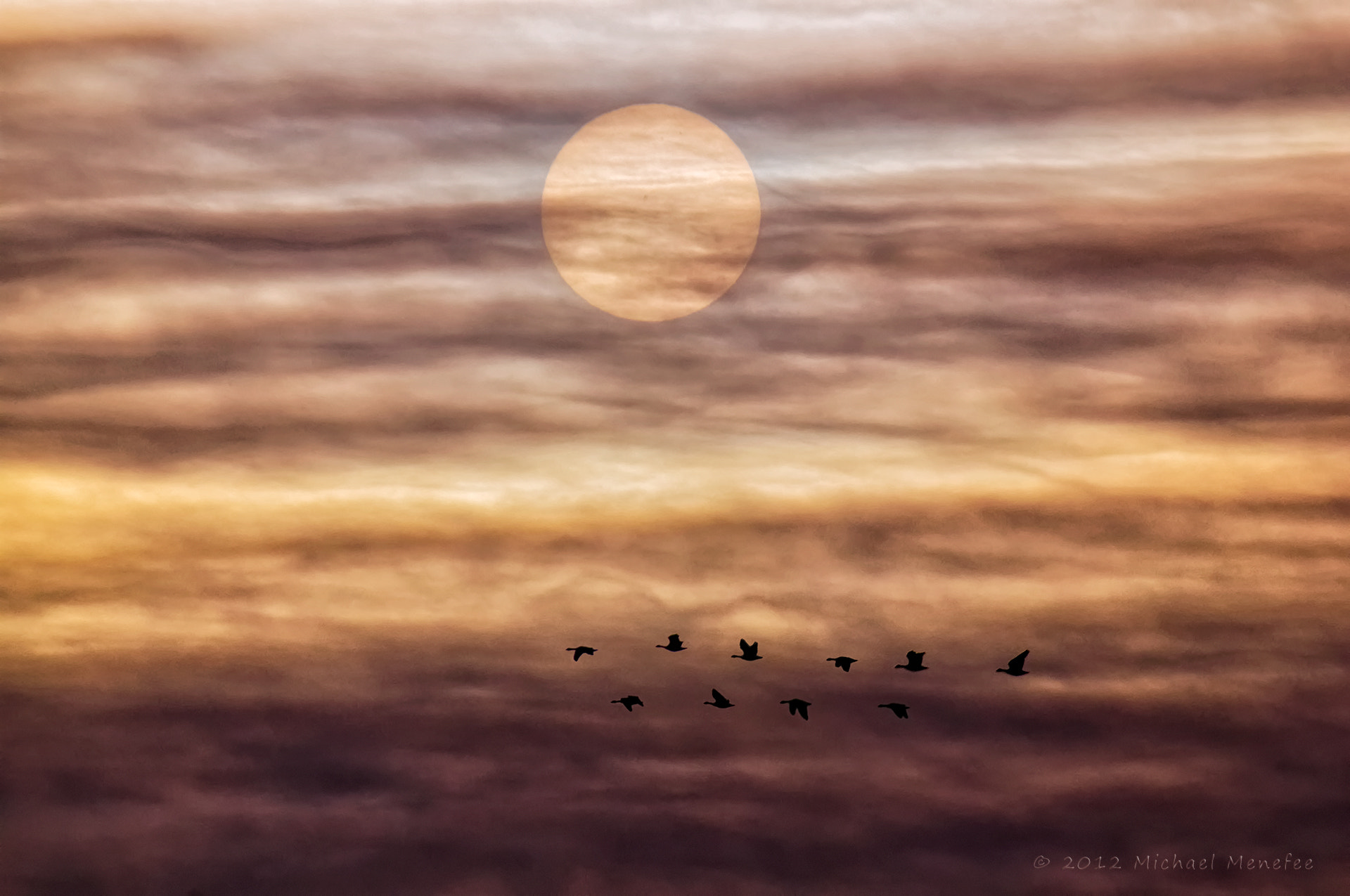 Photograph Solar Migration by Michael Menefee on 500px