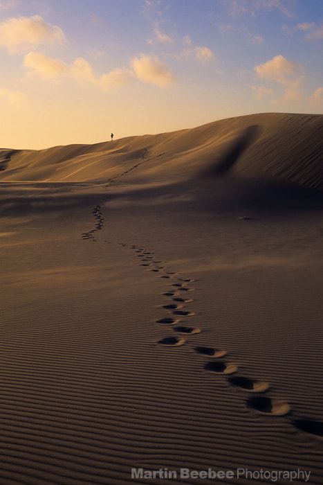 Photograph Hiker in sand dunes by Martin Beebee on 500px