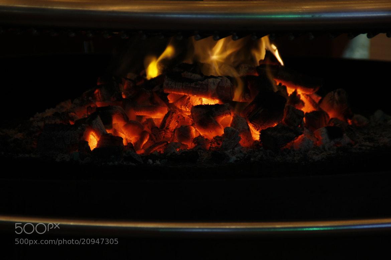 Photograph Winterland 9 by Greta Dierckx on 500px