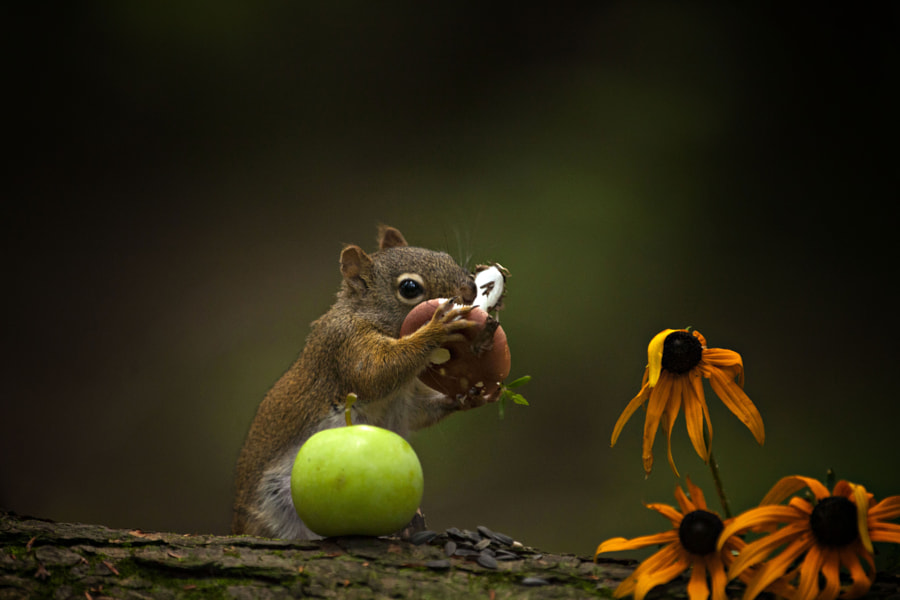 Tasting before stocking by Andre Villeneuve