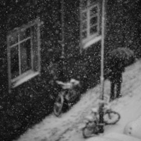 Untitled by Sandra  Drljača on 500px.com