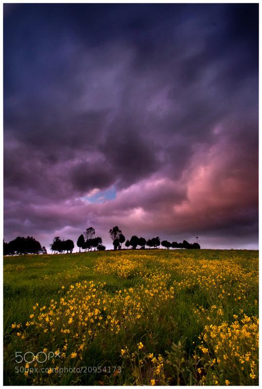 Photograph Chaupi Sunset by Fernando Salas on 500px