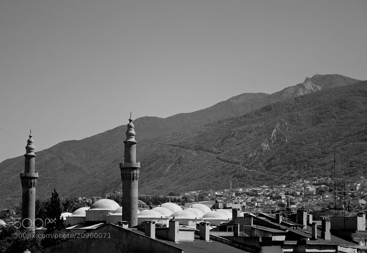 Photograph Minarets by Sibel Sedefoğlu on 500px