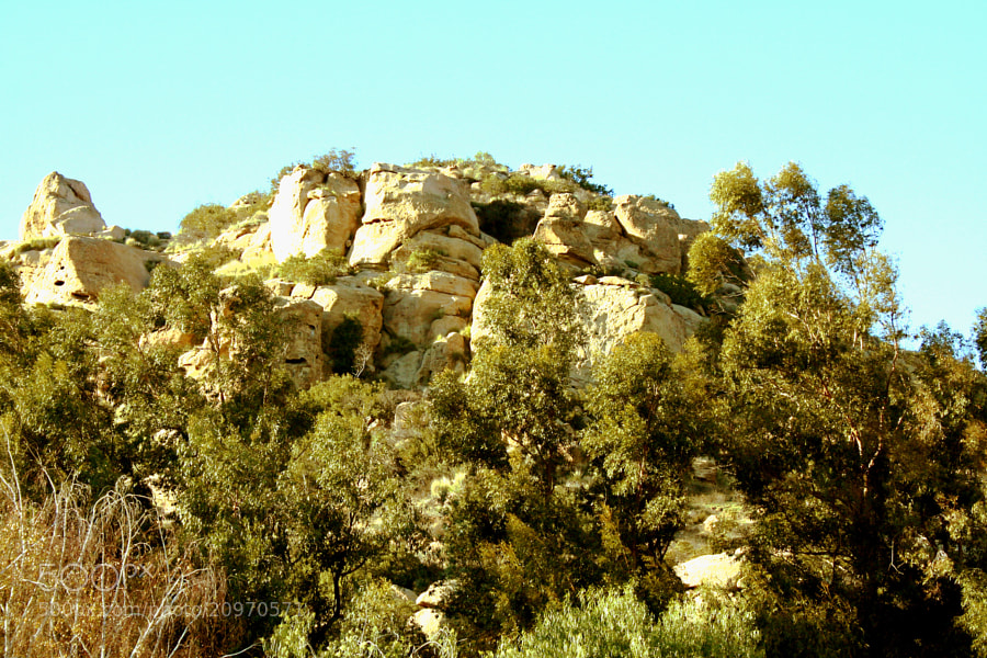 Stoney Point is a large rock formation in Chatsworth, California.  Once the home to the Tongva Indians.