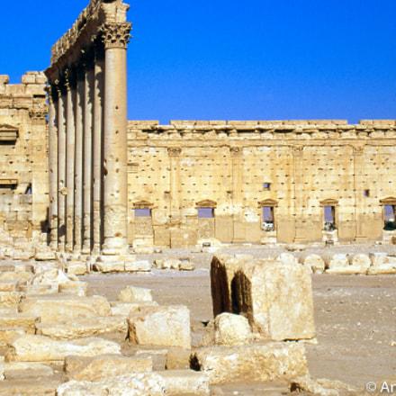 Palmyra.1999