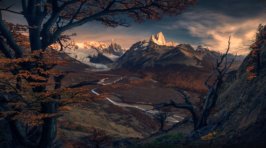 The Autumn Forest by Max Rive