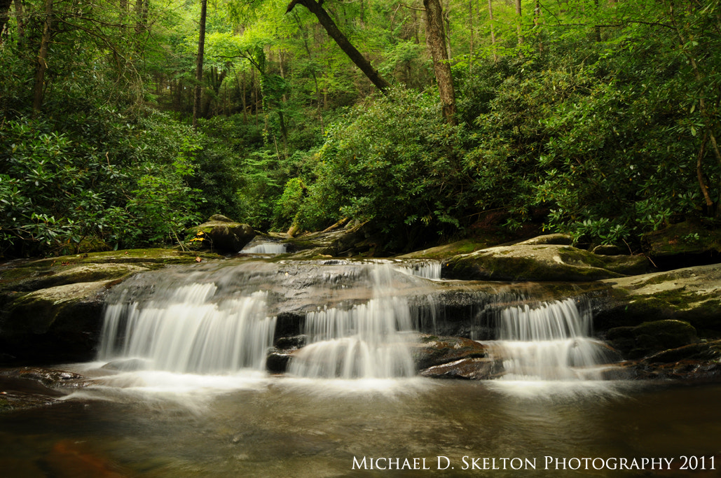 Photograph Trail to the Chimney Tops by Michael Skelton on 500px