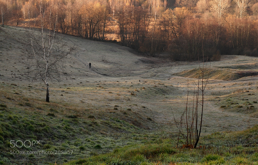 Photograph Morning meditations by Ekaterina Karavaeva on 500px