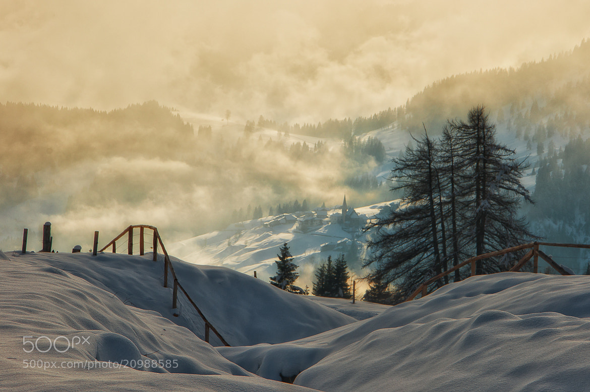 Photograph Tra la nebbia by Alessio Pellegrini on 500px