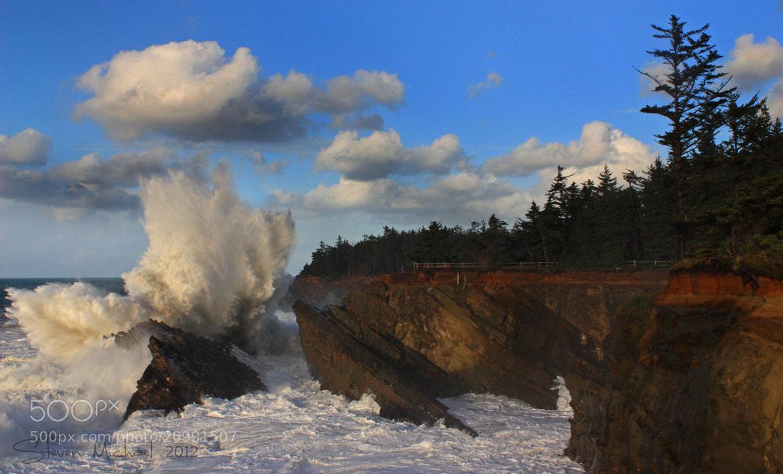 Photograph Shore Acres Wave Event ~ December 17th by Steven  Michael on 500px