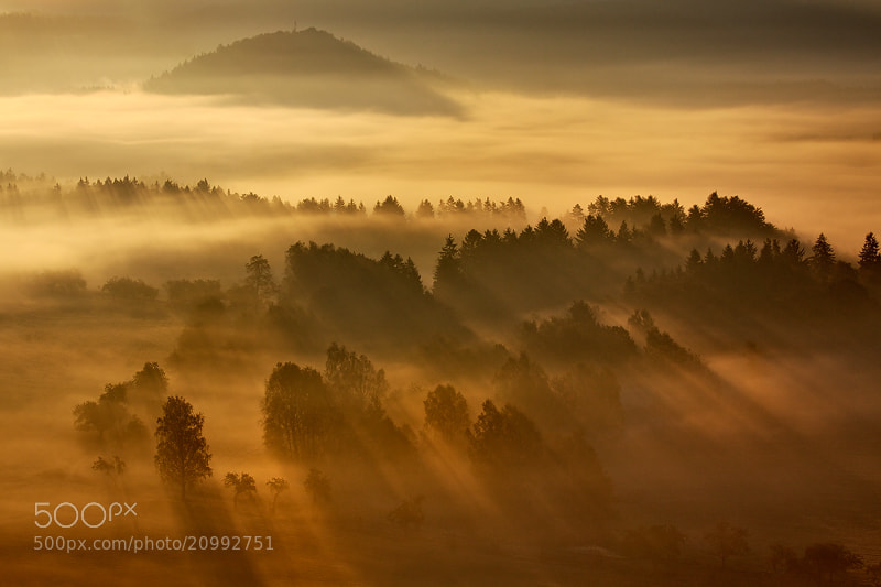 Photograph Rays In the Mist by Martin Rak on 500px