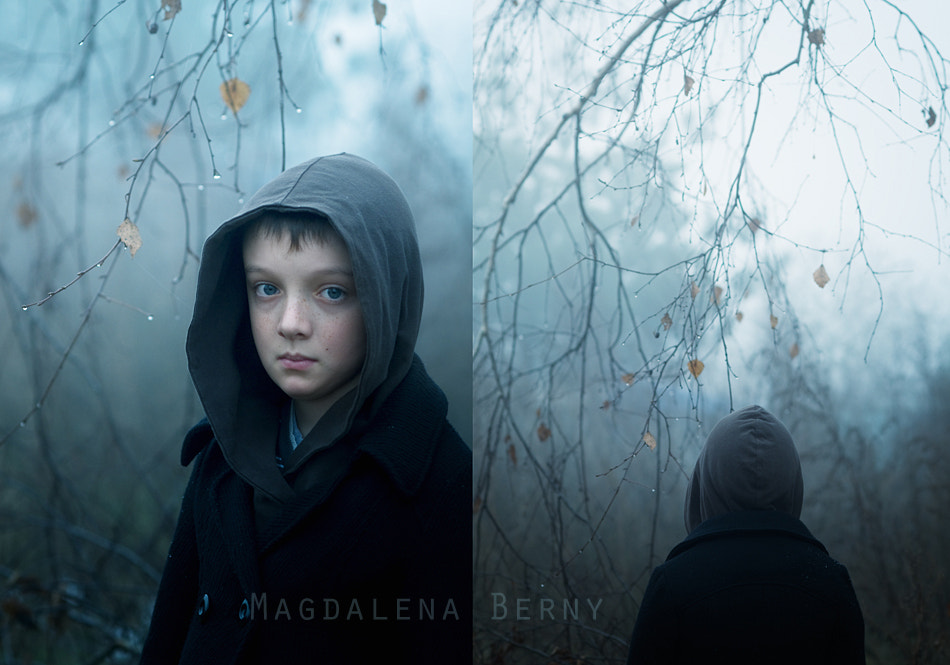 Photograph Fog by Magdalena Berny on 500px