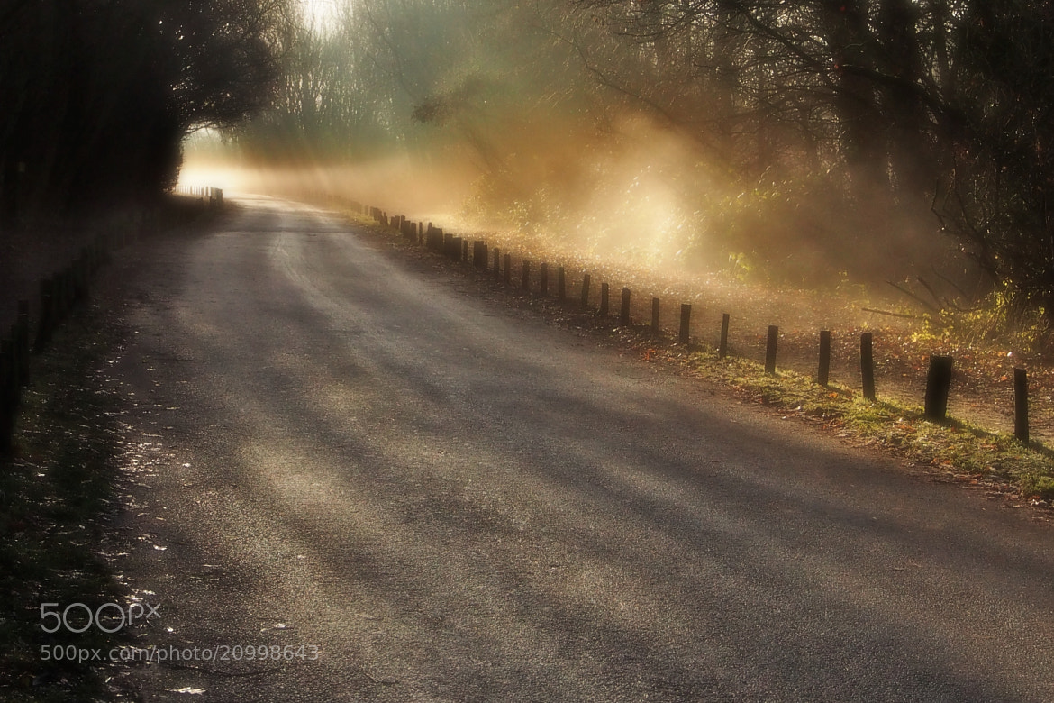 Photograph Misty Morn.. by John Purchase on 500px