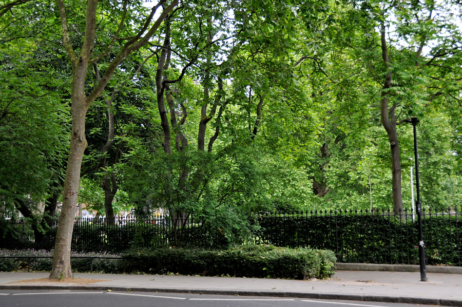 Streets of London, Brunswick Square by Sandra on 500px.com