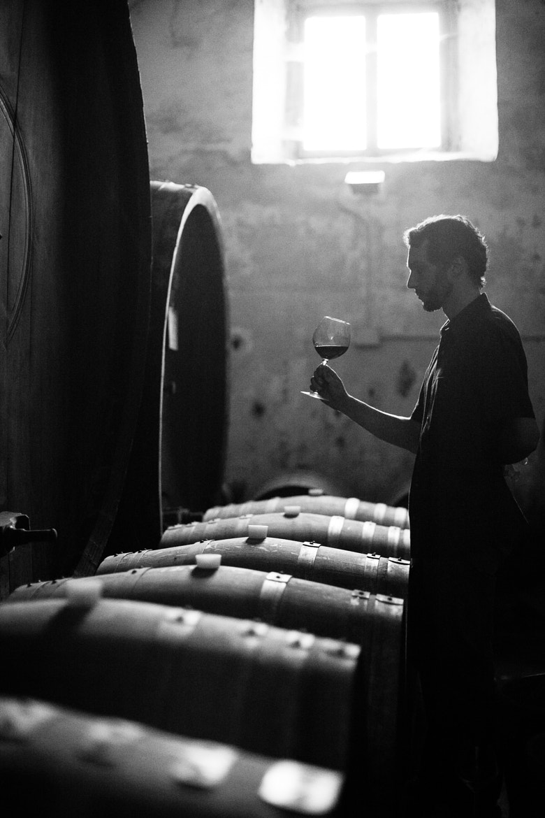 Photograph The sommelier by Beniamino Gelain on 500px