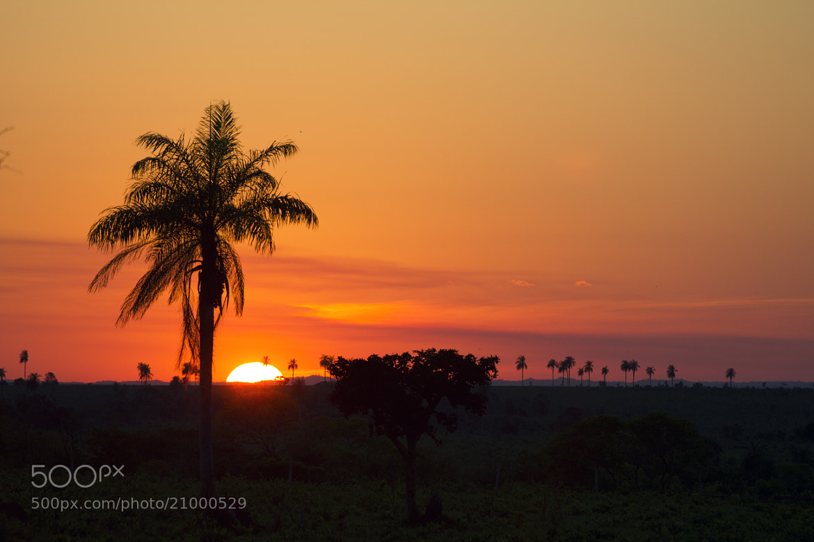 Photograph Sunset III by Itamar Campos on 500px