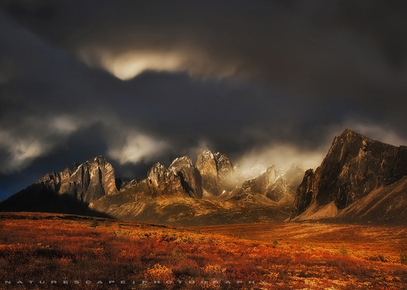 Photograph Lost World by Nagesh Mahadev on 500px