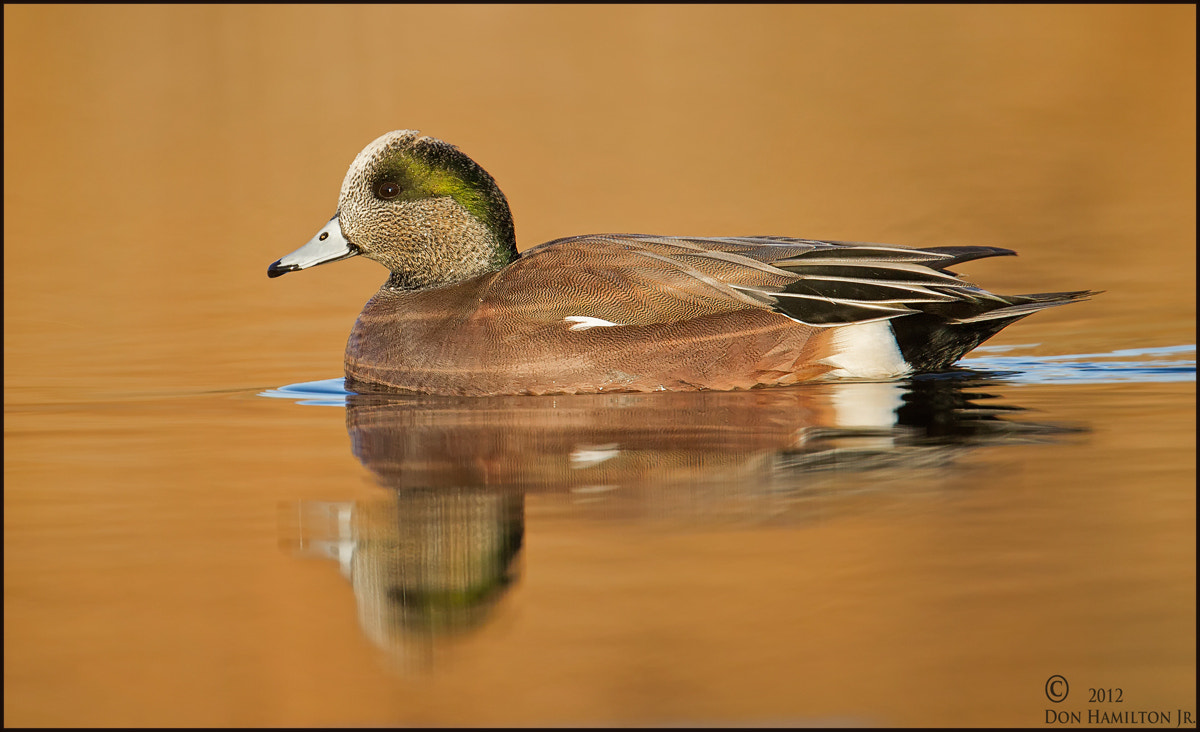Photograph On Golden Pond by Don  Hamilton Jr. on 500px
