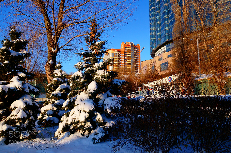 Photograph Winter morning... (2) by Grigory Nesvetaev on 500px