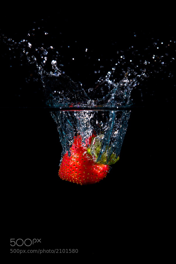 Shot using a 10 gallon aquarium. I used two flagged SB-800's on the left and right sides at 1/16 power. Also used one flagged SB-800 at about 45º from camera left at 1/64 power. Pretty much straight out of the camera.