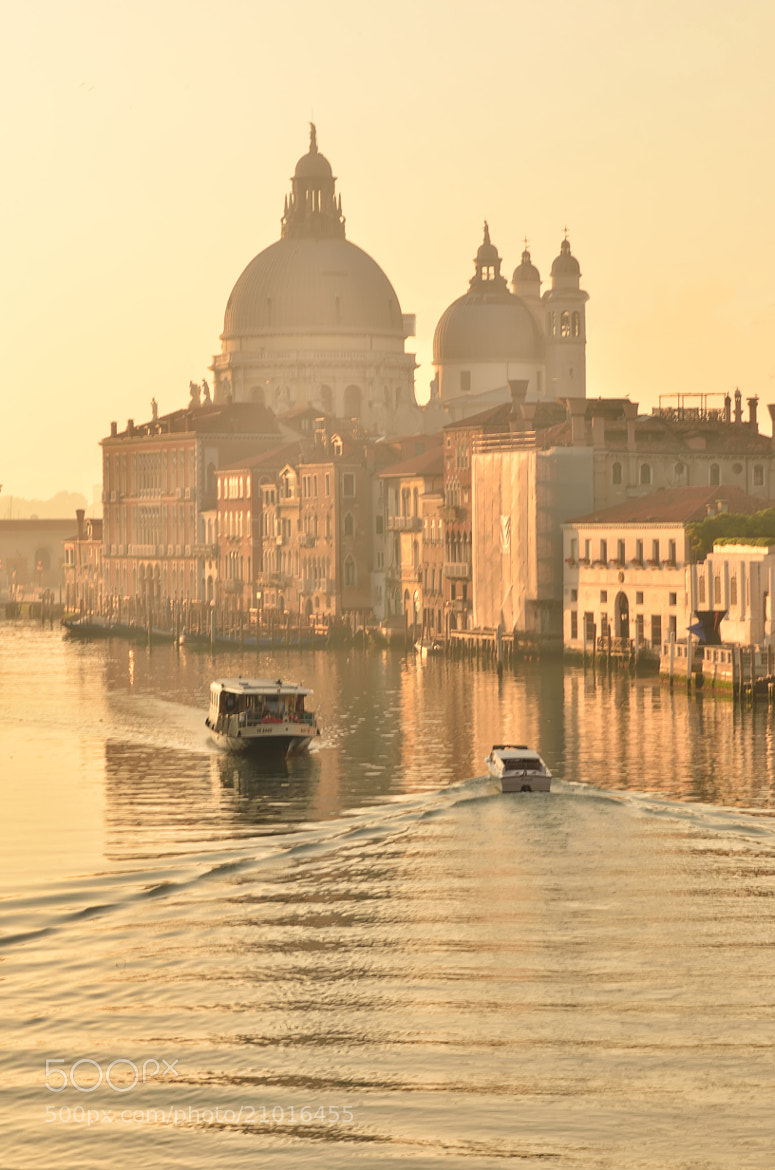 Photograph Golden Venice by Csilla Zelko on 500px