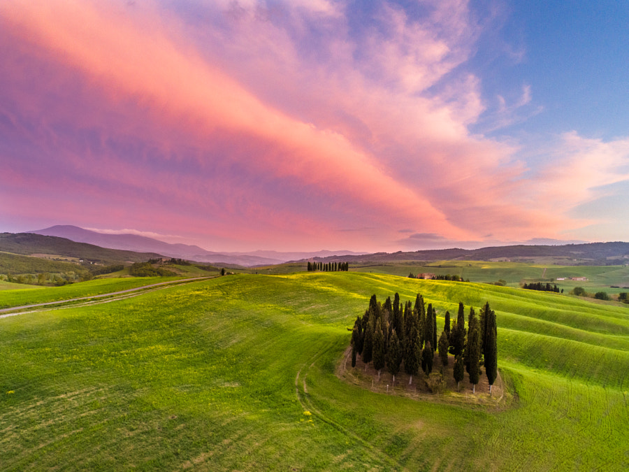 Happy Birthday to me by Luca Micheli ✅ on 500px.com
