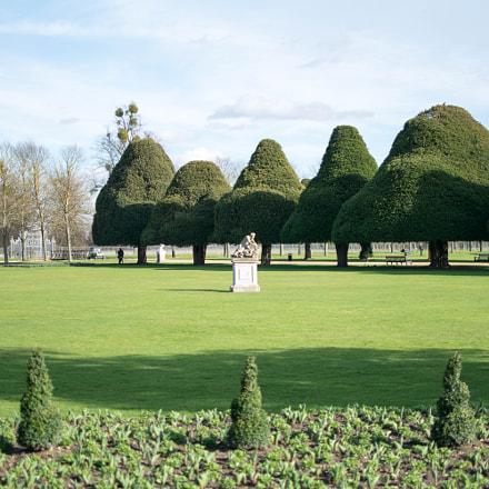 Hapton Court Gardens