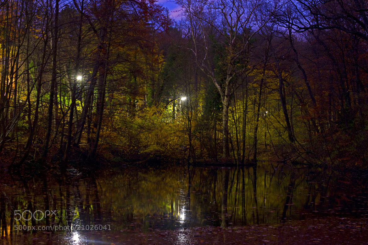 Photograph Autumnight by Patrick Hochleitner on 500px