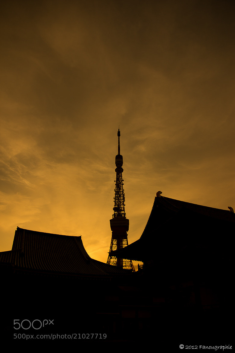 Photograph Tokyo Silhouette by Fanougraphie * on 500px