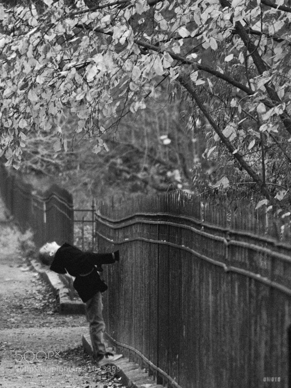 A kid is enjoying a bottom view of the Jardin des plantes's trees. 
