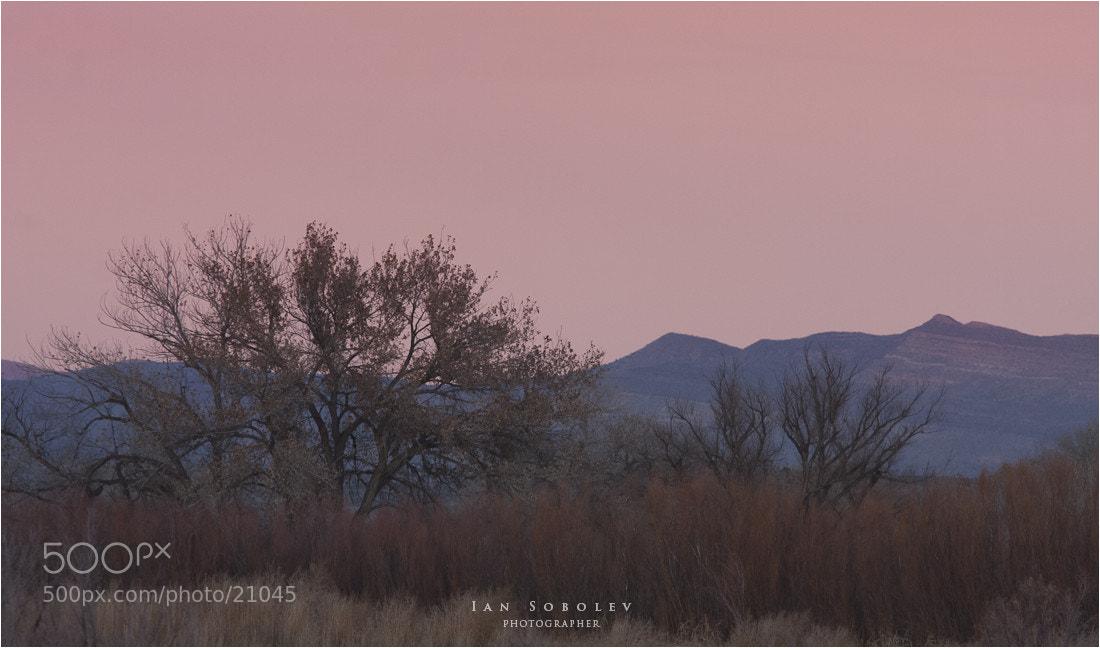 Photograph Silky Sunset by Evgeny Tchebotarev on 500px