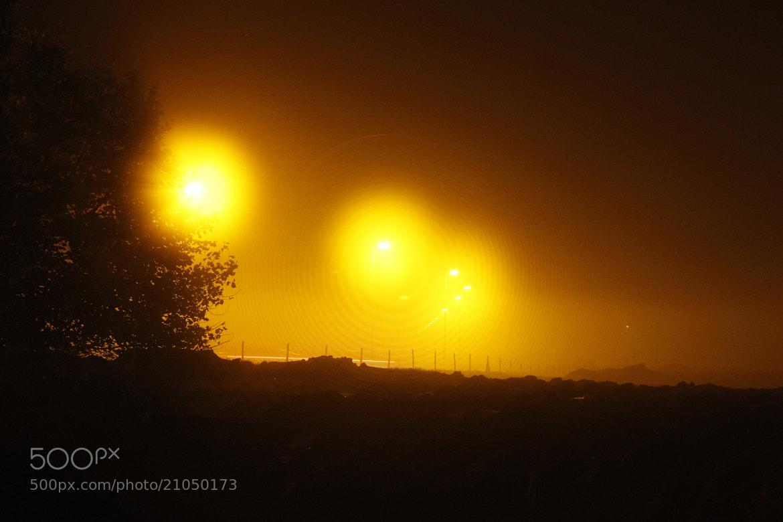 Photograph Yellow night by Greta Dierckx on 500px