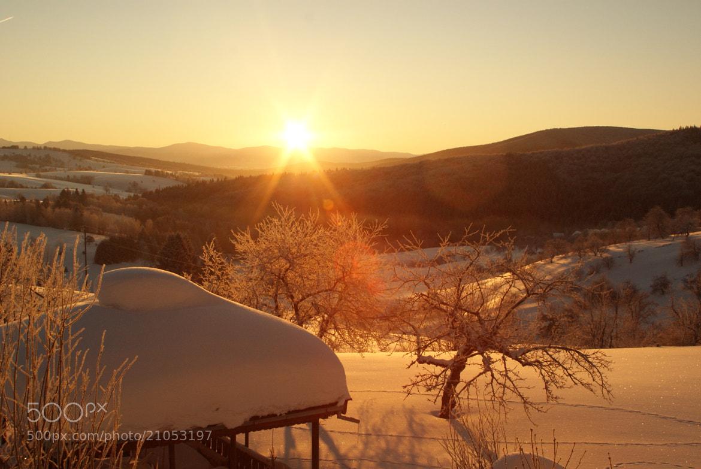 Photograph Sunny days... by Manuela Leanca on 500px