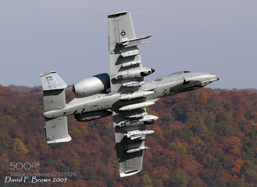 The A-10A Thunderbolt II, AKA Warthog, has worn many monikers.  My favorite is, Ugly But Well Hung, an obvious reference to the amount of ordnance they can haul into combat.