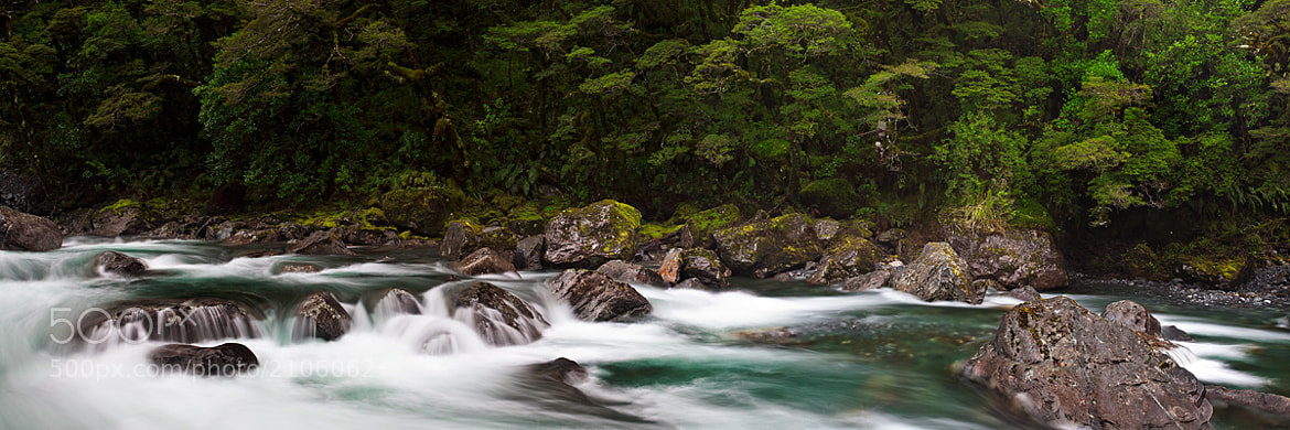 Photograph Hollyford Rapids by Andrew McNeil on 500px