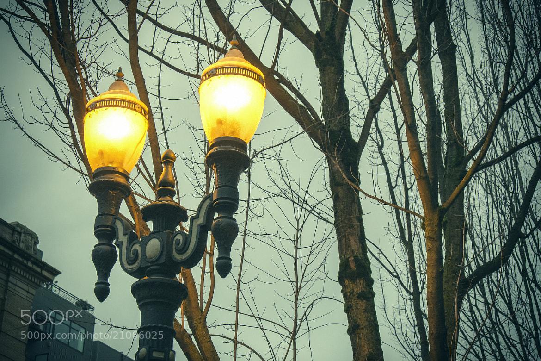 Photograph Portland Winter by Joe Wilson on 500px