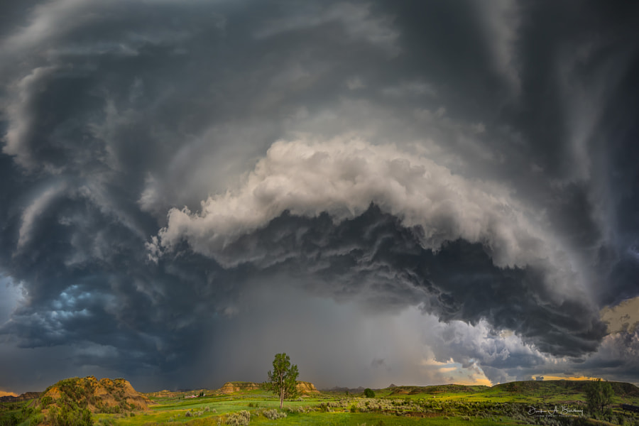 Beauty As I Have Known by Derek Burdeny on 500px.com