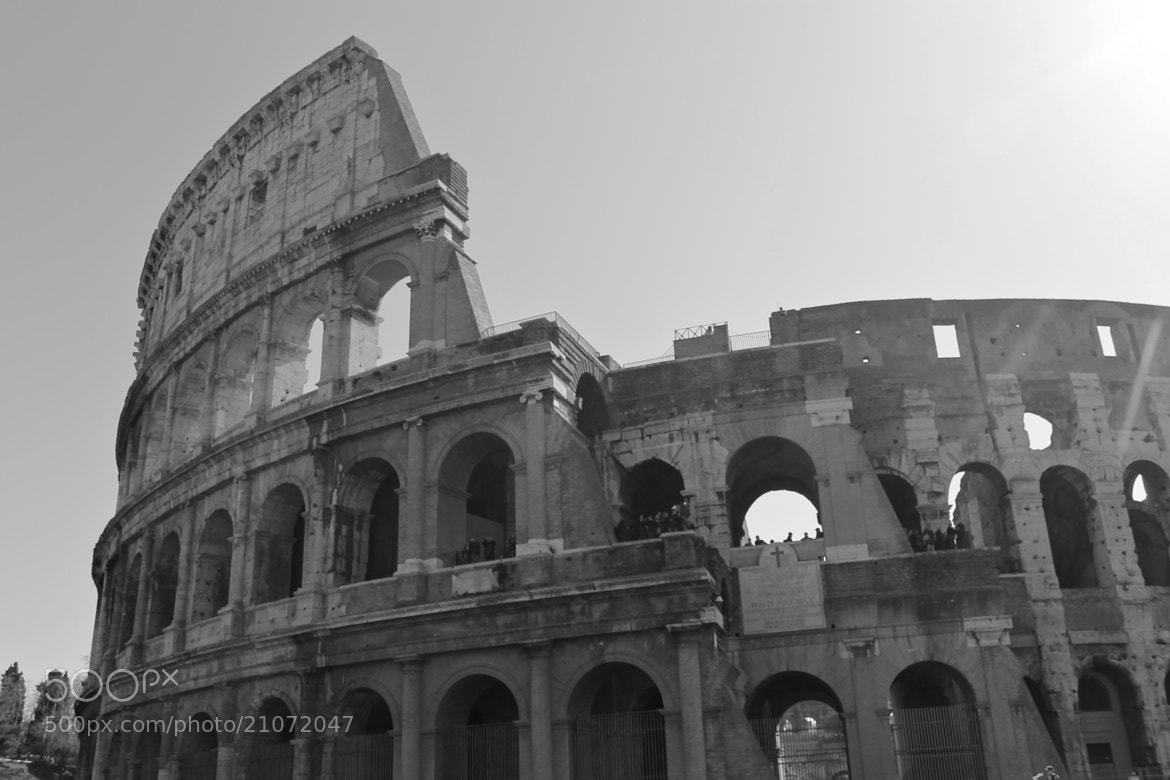 Photograph Colosseum by Janice Marie on 500px