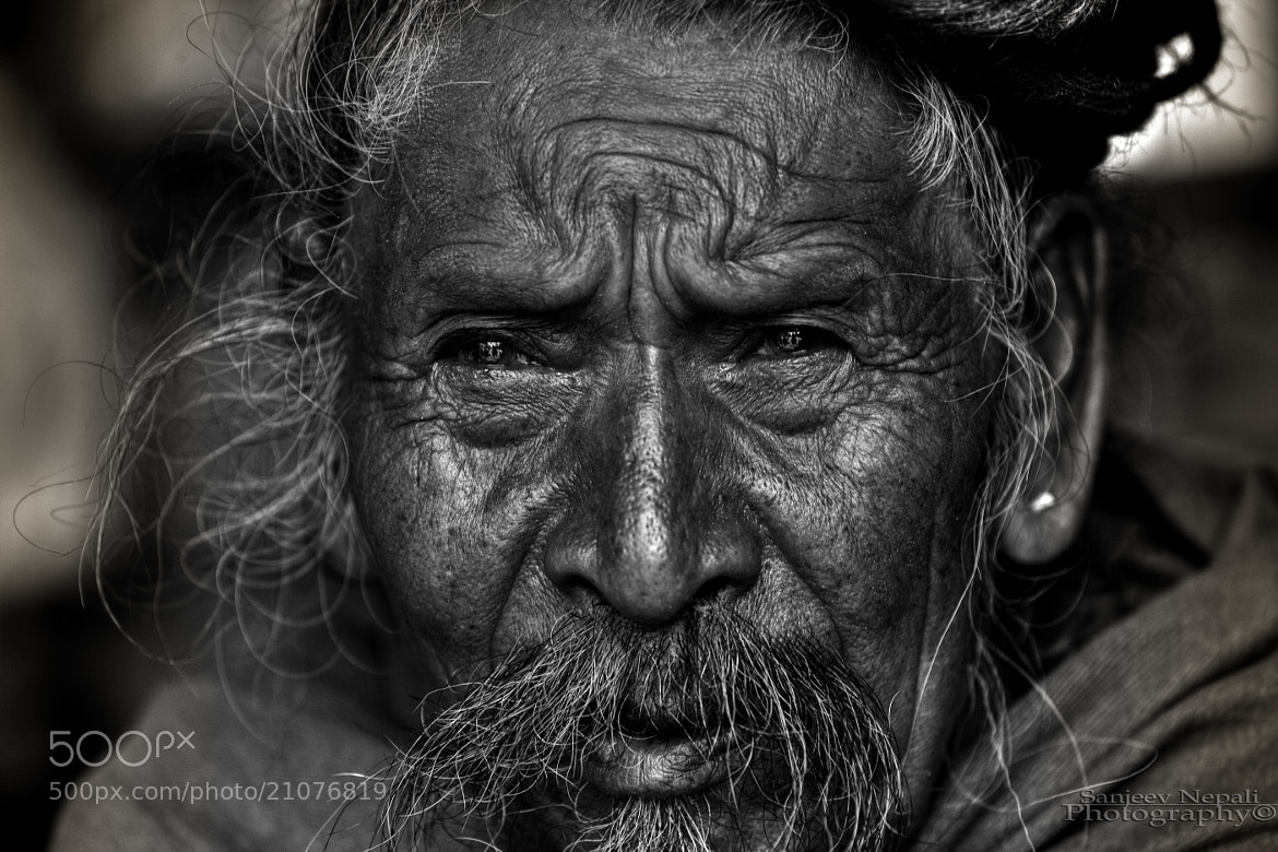 Photograph Color of vision by Sanjeev Nepali  on 500px